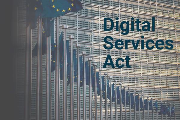 EU Fahnen im Halbkreis und Digital Services Act als Schrift
